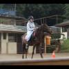 Equestrian, Olahraga Berkuda yang Wajib Kamu Coba